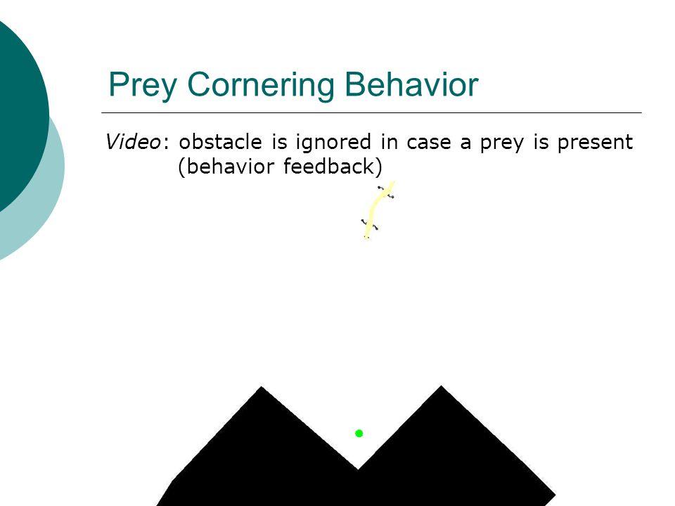Prey Cornering Behavior Video: obstacle is ignored in case a prey is present (behavior feedback)