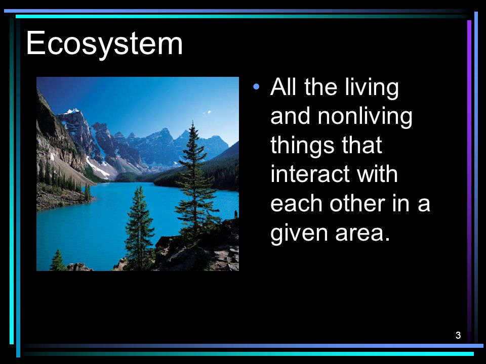 3 Ecosystem All the living and nonliving things that interact with each other in a given area.