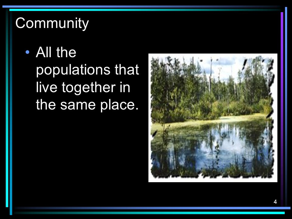 4 Community All the populations that live together in the same place.