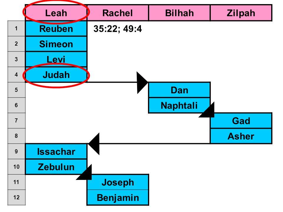 LeahRachelBilhahZilpah 1 Reuben35:22; 49:4 2 Simeon 3 Levi 4 Judah 5 Dan 6 Naphtali 7 Gad 8 Asher 9 Issachar 10 Zebulun 11 Joseph 12 Benjamin