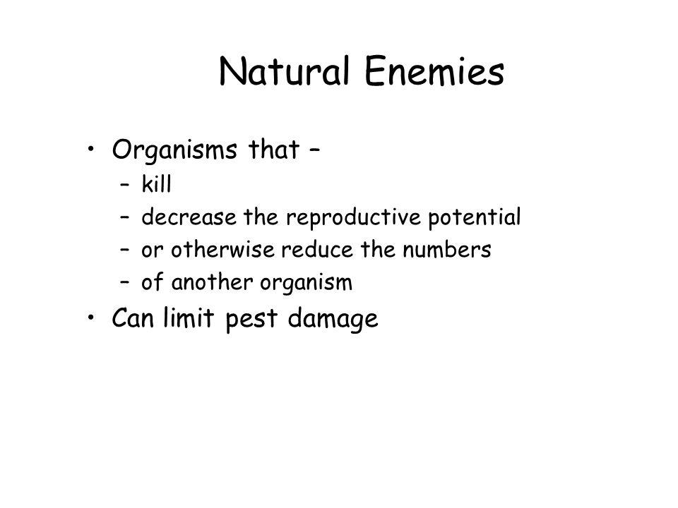 Natural Enemies Reduce pest populations through –predation –parasitism –herbivory –competition –antibiosis