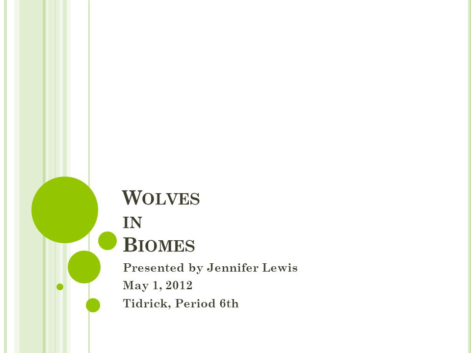 W OLVES IN B IOMES Presented by Jennifer Lewis May 1, 2012 Tidrick, Period 6th