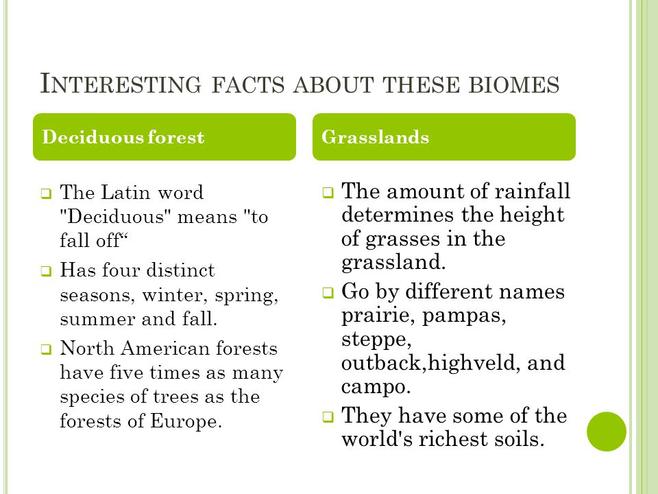 I NTERESTING FACTS ABOUT THESE BIOMES  The Latin word Deciduous means to fall off  Has four distinct seasons, winter, spring, summer and fall.