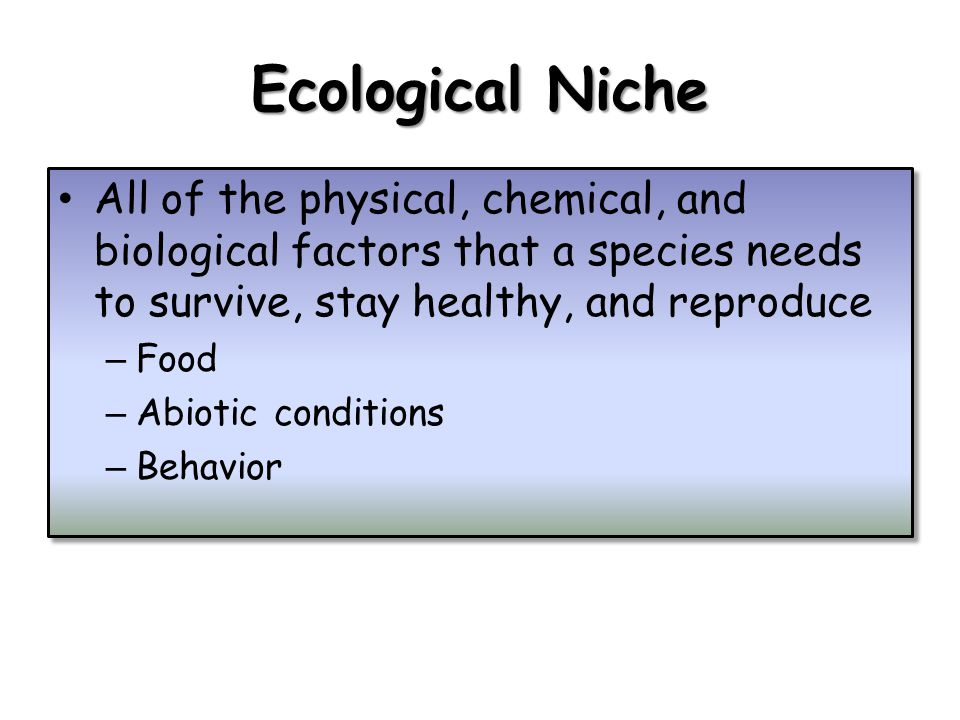 Ecological Niche All of the physical, chemical, and biological factors that a species needs to survive, stay healthy, and reproduce – Food – Abiotic conditions – Behavior All of the physical, chemical, and biological factors that a species needs to survive, stay healthy, and reproduce – Food – Abiotic conditions – Behavior