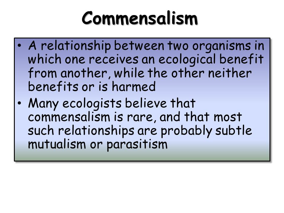 Commensalism A relationship between two organisms in which one receives an ecological benefit from another, while the other neither benefits or is harmed Many ecologists believe that commensalism is rare, and that most such relationships are probably subtle mutualism or parasitism A relationship between two organisms in which one receives an ecological benefit from another, while the other neither benefits or is harmed Many ecologists believe that commensalism is rare, and that most such relationships are probably subtle mutualism or parasitism