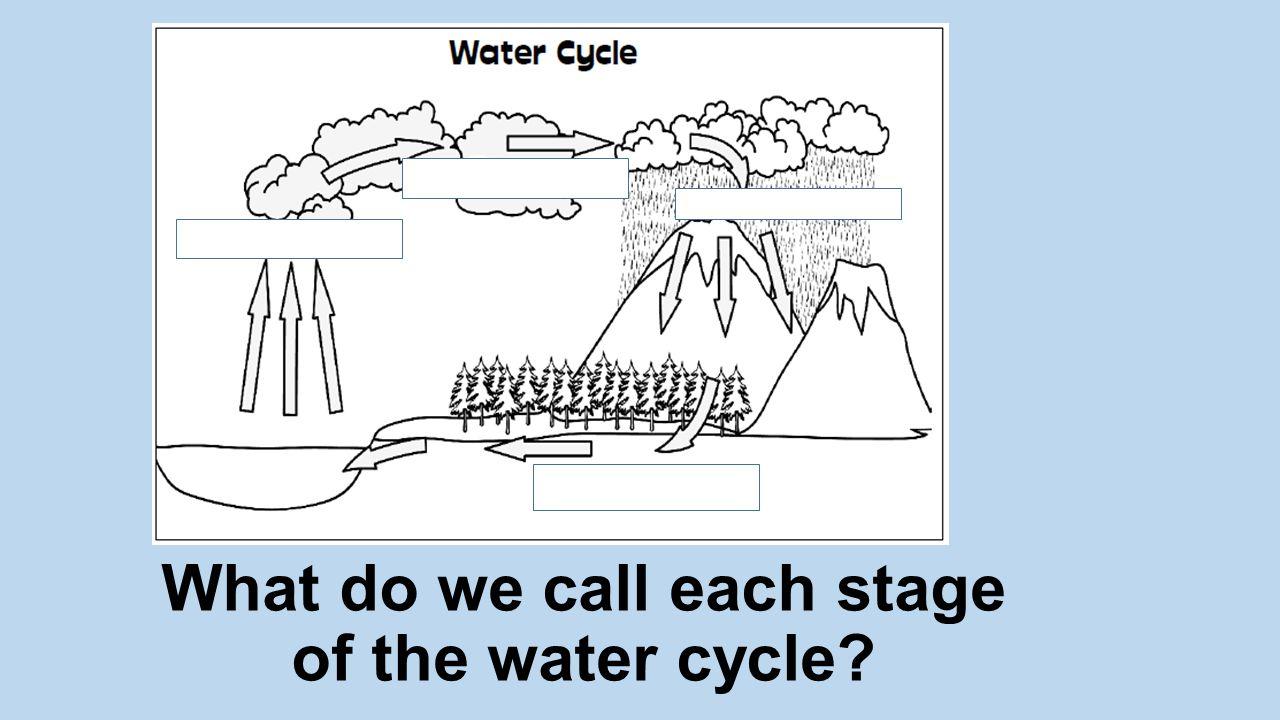A rain gauge measures the amount of precipitation.