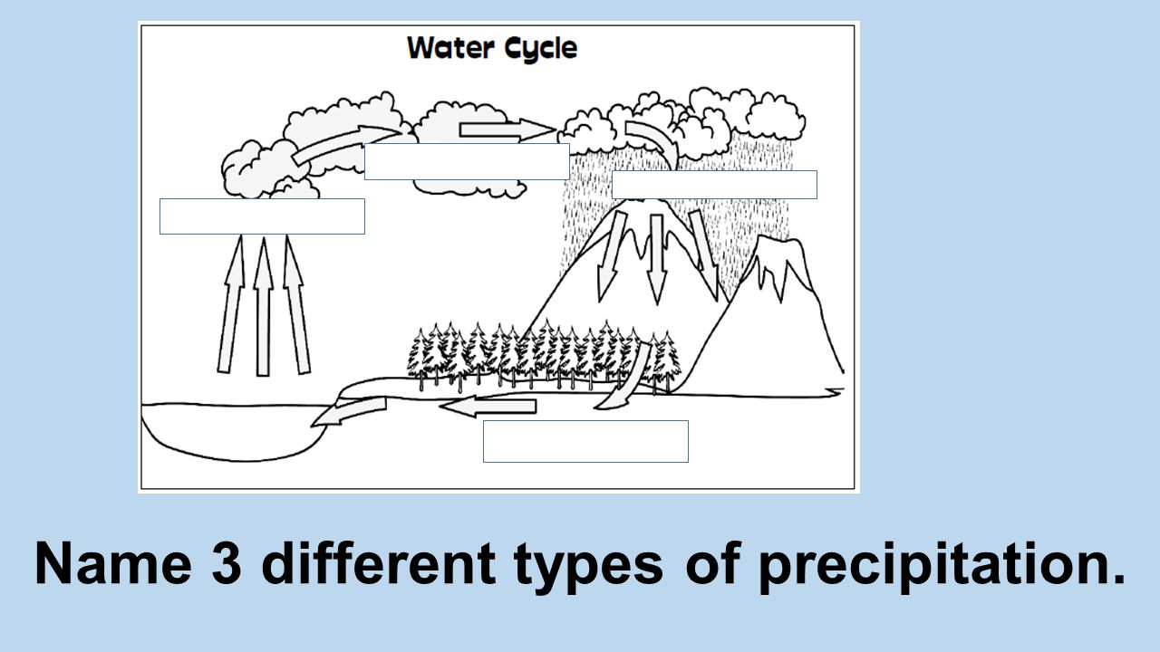 Name 3 different types of precipitation.