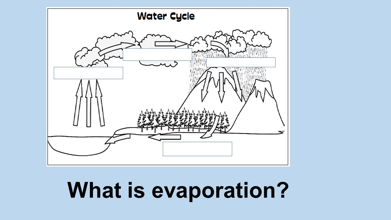 The sun heats the water and causes it to change to water vapor, which then rises into the air.