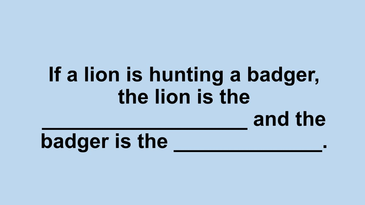 If a lion is hunting a badger, the lion is the __________________ and the badger is the _____________.
