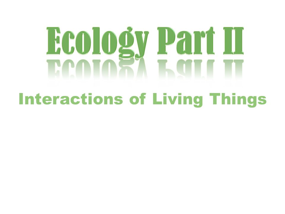 What is an ecological niche.