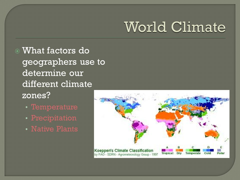  What factors do geographers use to determine our different climate zones? Temperature Precipitation Native Plants
