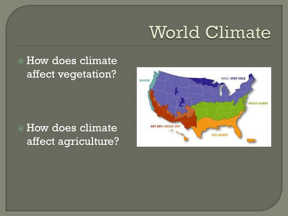  How does climate affect vegetation?  How does climate affect agriculture?