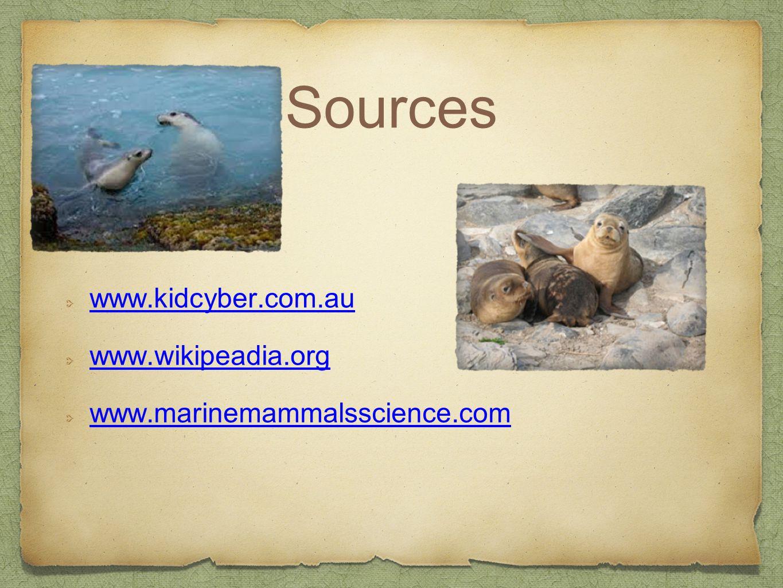 Sources www.kidcyber.com.au www.wikipeadia.org www.marinemammalsscience.com