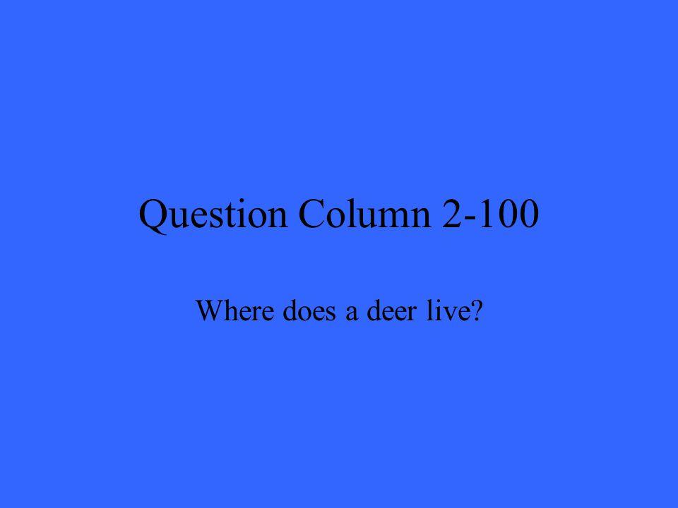 Question Column 2-100 Where does a deer live