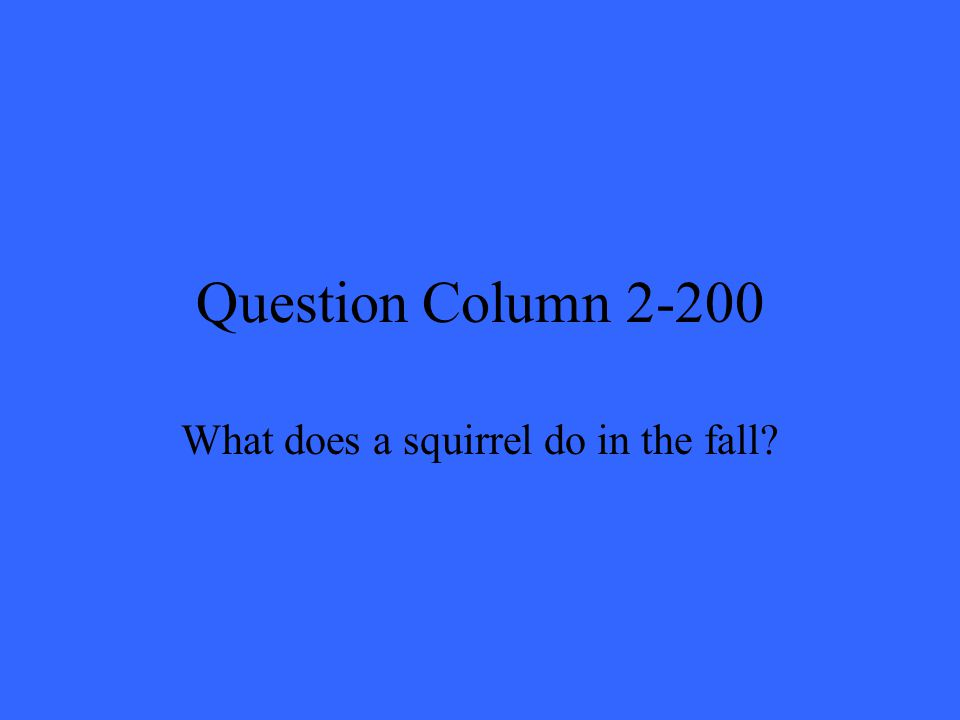 Question Column 2-200 What does a squirrel do in the fall