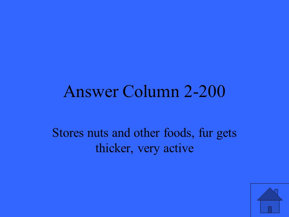 Answer Column 2-200 Stores nuts and other foods, fur gets thicker, very active