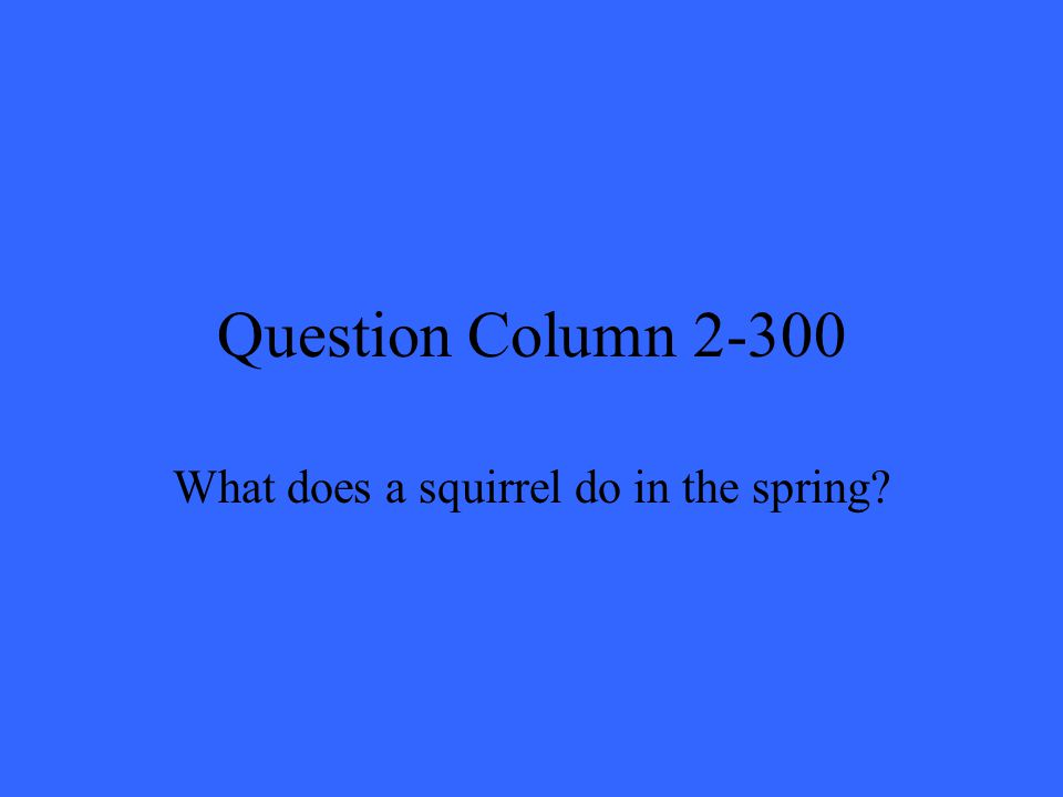 Question Column 2-300 What does a squirrel do in the spring