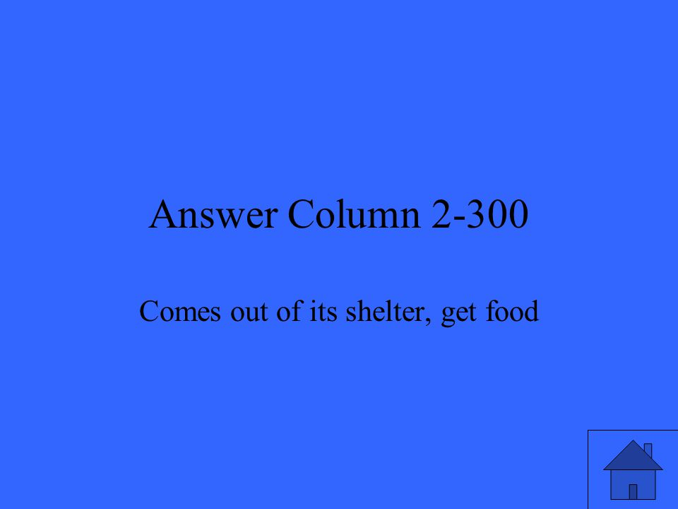 Answer Column 2-300 Comes out of its shelter, get food