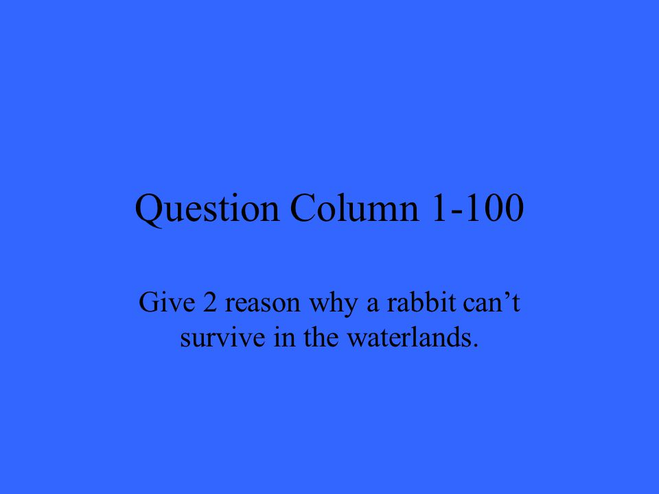 Question Column 1-100 Give 2 reason why a rabbit can't survive in the waterlands.