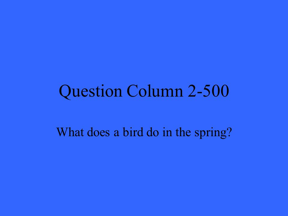 Question Column 2-500 What does a bird do in the spring