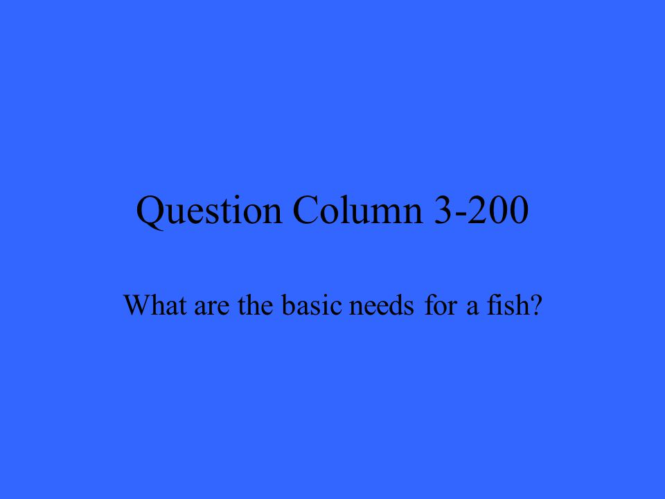 Question Column 3-200 What are the basic needs for a fish