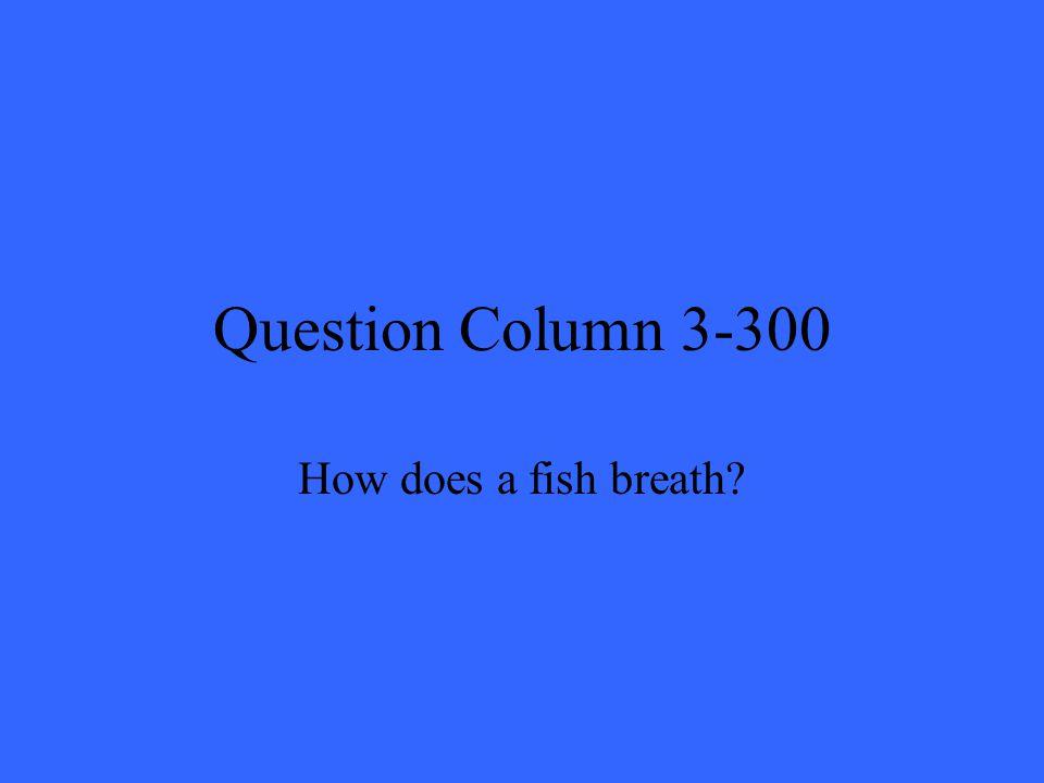 Question Column 3-300 How does a fish breath?