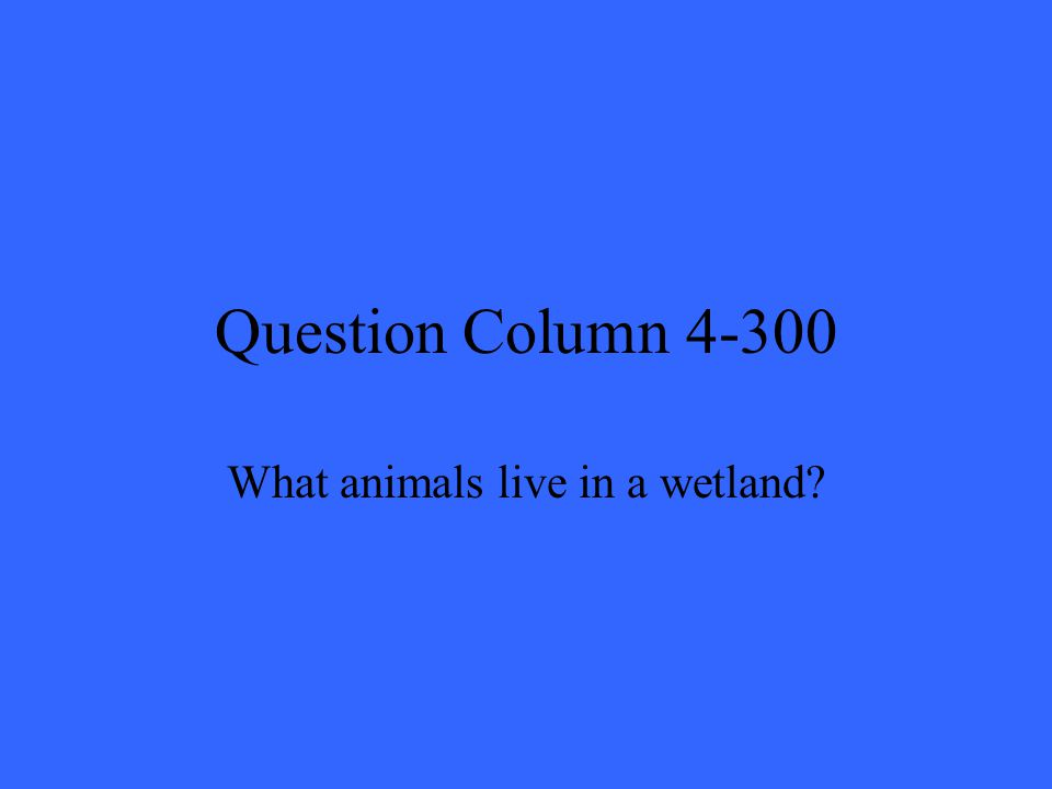 Question Column 4-300 What animals live in a wetland