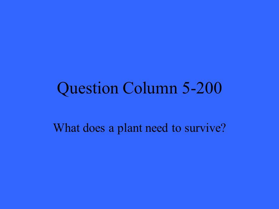 Question Column 5-200 What does a plant need to survive?
