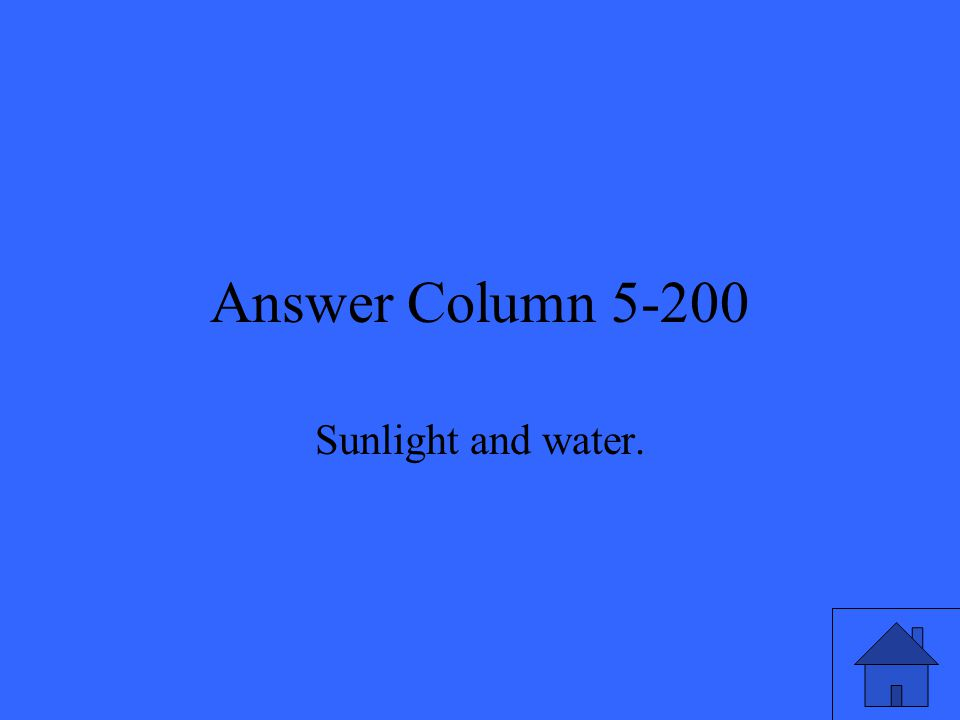 Answer Column 5-200 Sunlight and water.