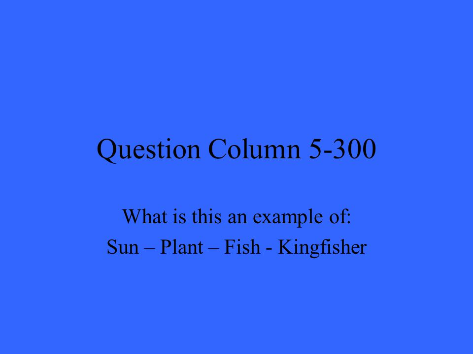 Question Column 5-300 What is this an example of: Sun – Plant – Fish - Kingfisher