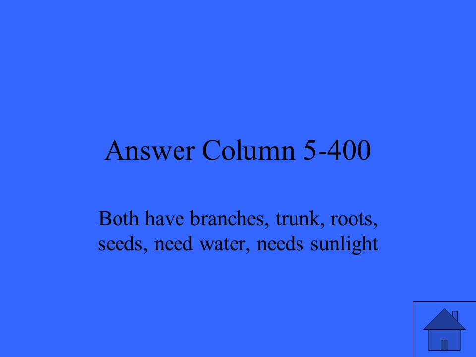 Answer Column 5-400 Both have branches, trunk, roots, seeds, need water, needs sunlight