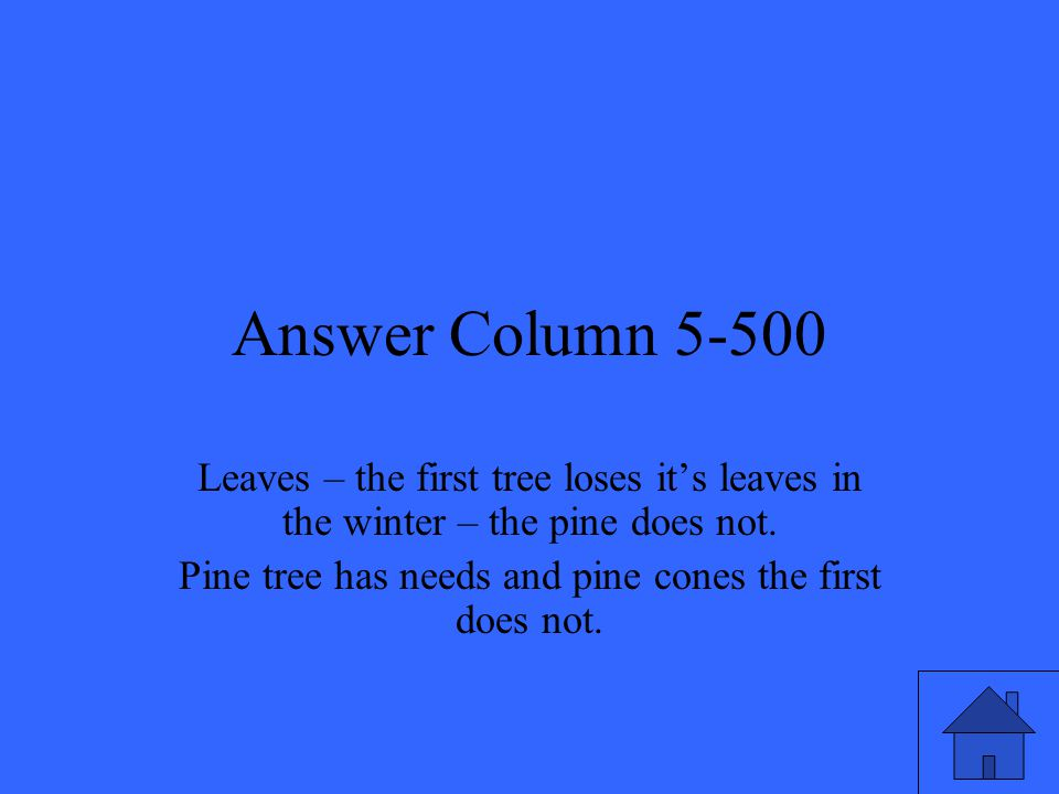 Answer Column 5-500 Leaves – the first tree loses it's leaves in the winter – the pine does not.