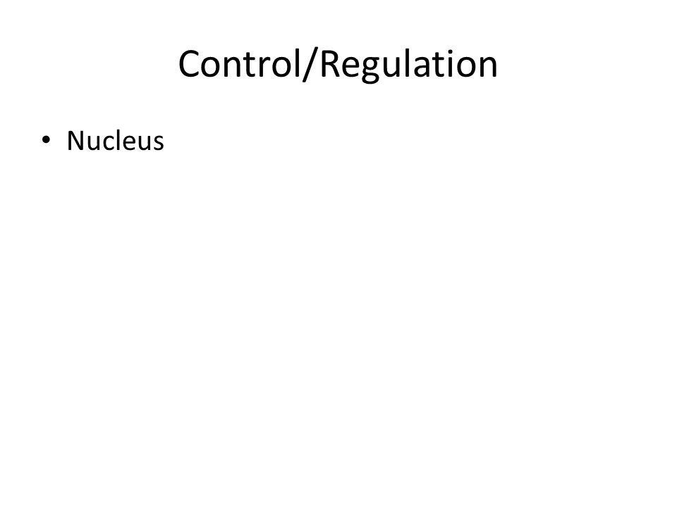 Control/Regulation Nucleus
