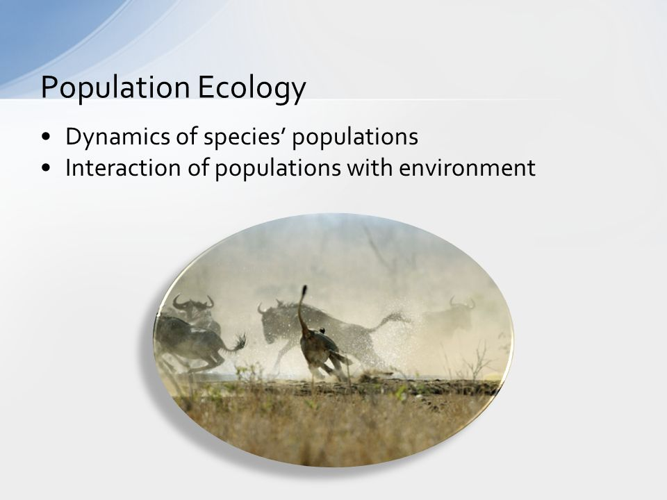 Dynamics of species' populations Interaction of populations with environment Population Ecology