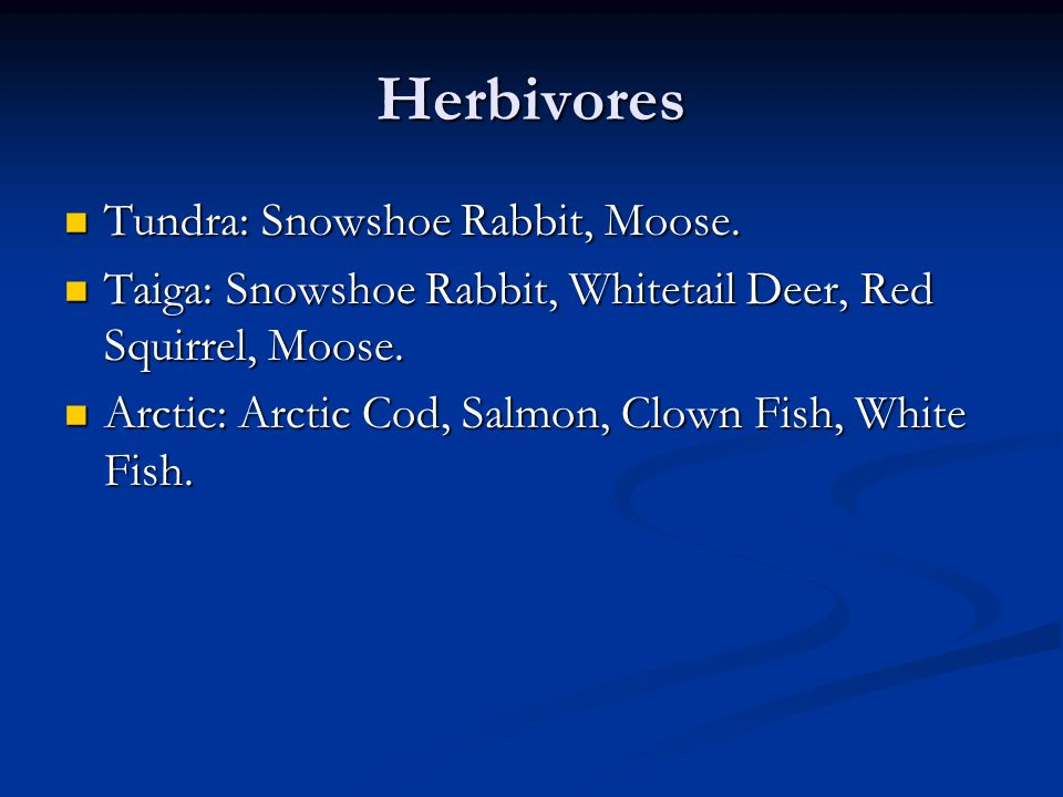 Herbivores Tundra: Snowshoe Rabbit, Moose. Tundra: Snowshoe Rabbit, Moose. Taiga: Snowshoe Rabbit, Whitetail Deer, Red Squirrel, Moose. Taiga: Snowsho