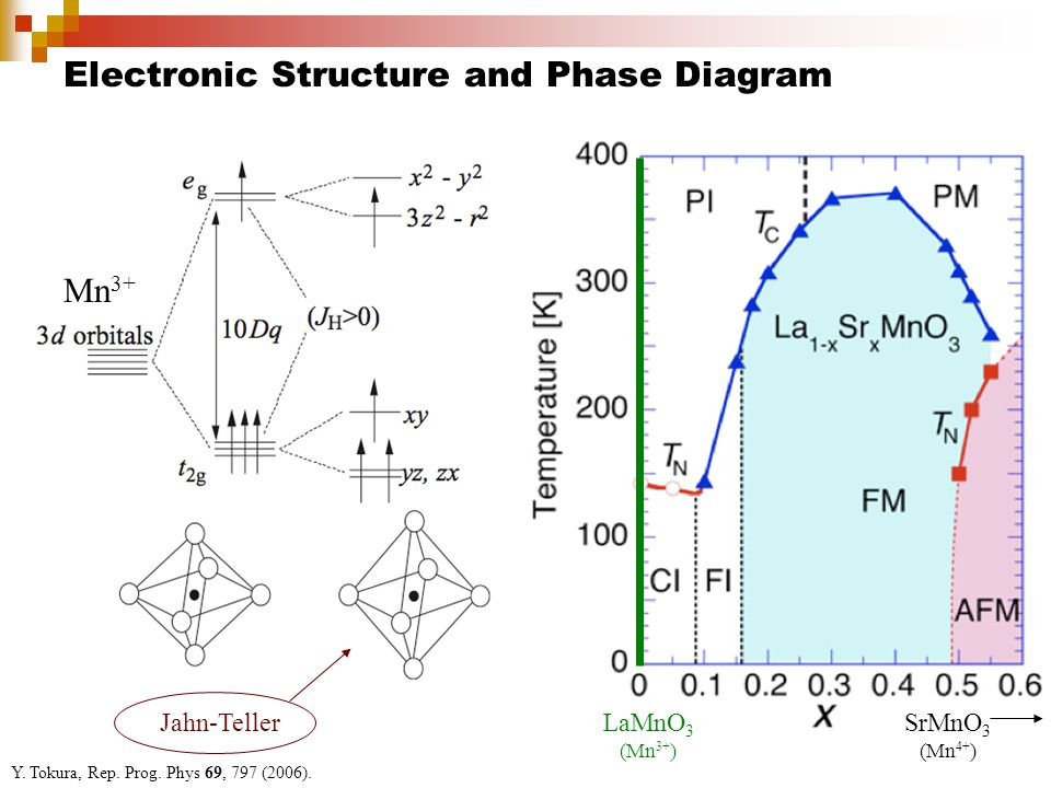 Electronic Structure and Phase Diagram Y.Tokura, Rep.