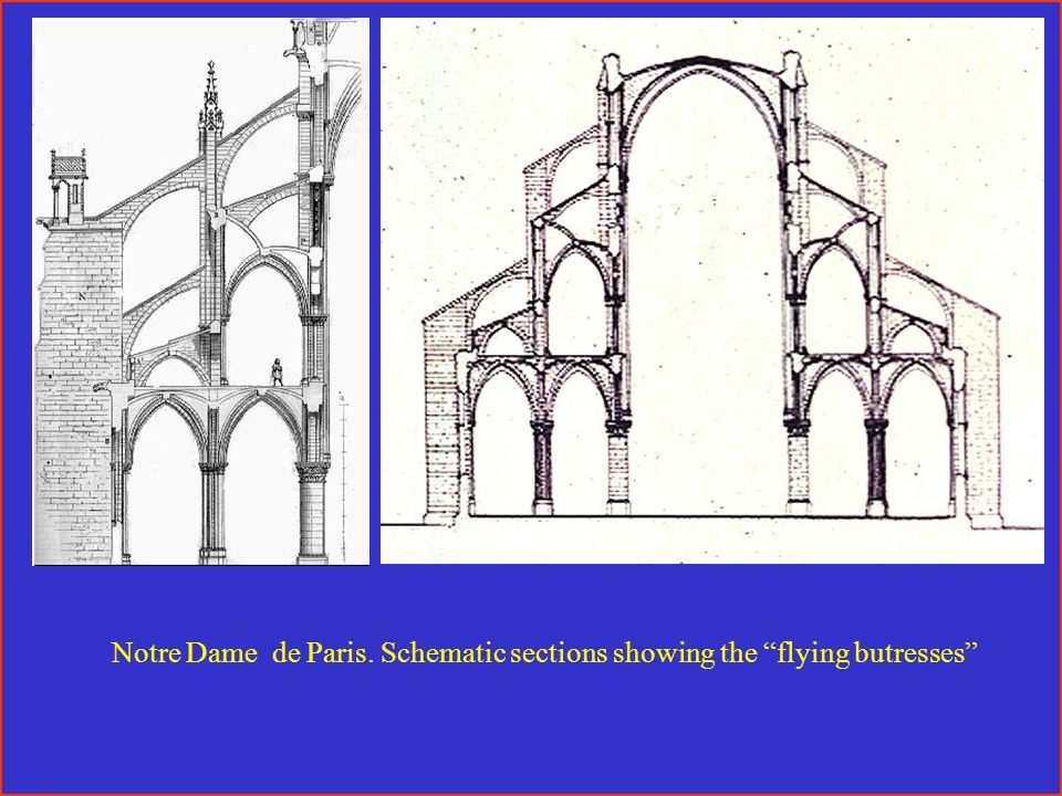 Notre Dame de Paris. Schematic sections showing the flying butresses