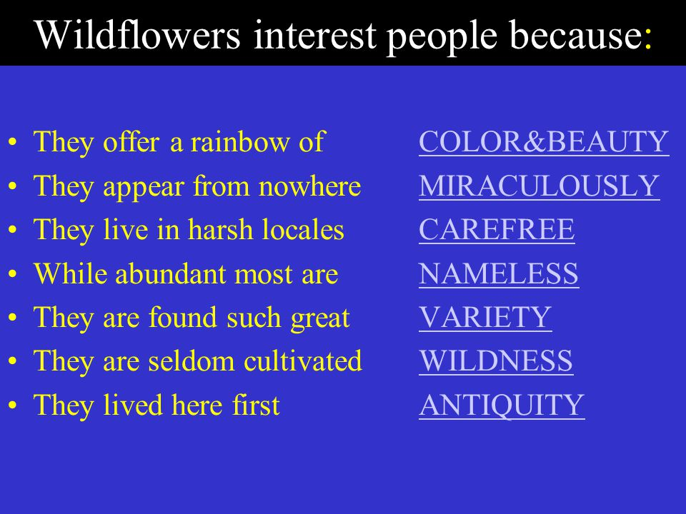 Wildflowers interest people because: They offer a rainbow of COLOR&BEAUTYCOLOR&BEAUTY They appear from nowhere MIRACULOUSLYMIRACULOUSLY They live in harsh localesCAREFREECAREFREE While abundant most are NAMELESSNAMELESS They are found such great VARIETYVARIETY They are seldom cultivatedWILDNESSWILDNESS They lived here firstANTIQUITYANTIQUITY