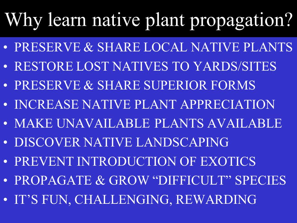 Why learn native plant propagation.