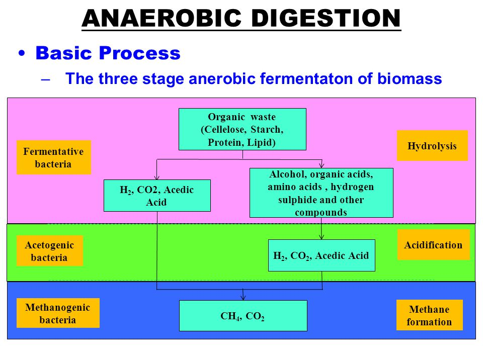 Basic Process –The three stage anerobic fermentaton of biomass ANAEROBIC DIGESTION Organic waste (Cellelose, Starch, Protein, Lipid) H 2, CO2, Acedic Acid Alcohol, organic acids, amino acids, hydrogen sulphide and other compounds H 2, CO 2, Acedic Acid CH 4, CO 2 Hydrolysis Acidification Methane formation Fermentative bacteria Acetogenic bacteria Methanogenic bacteria