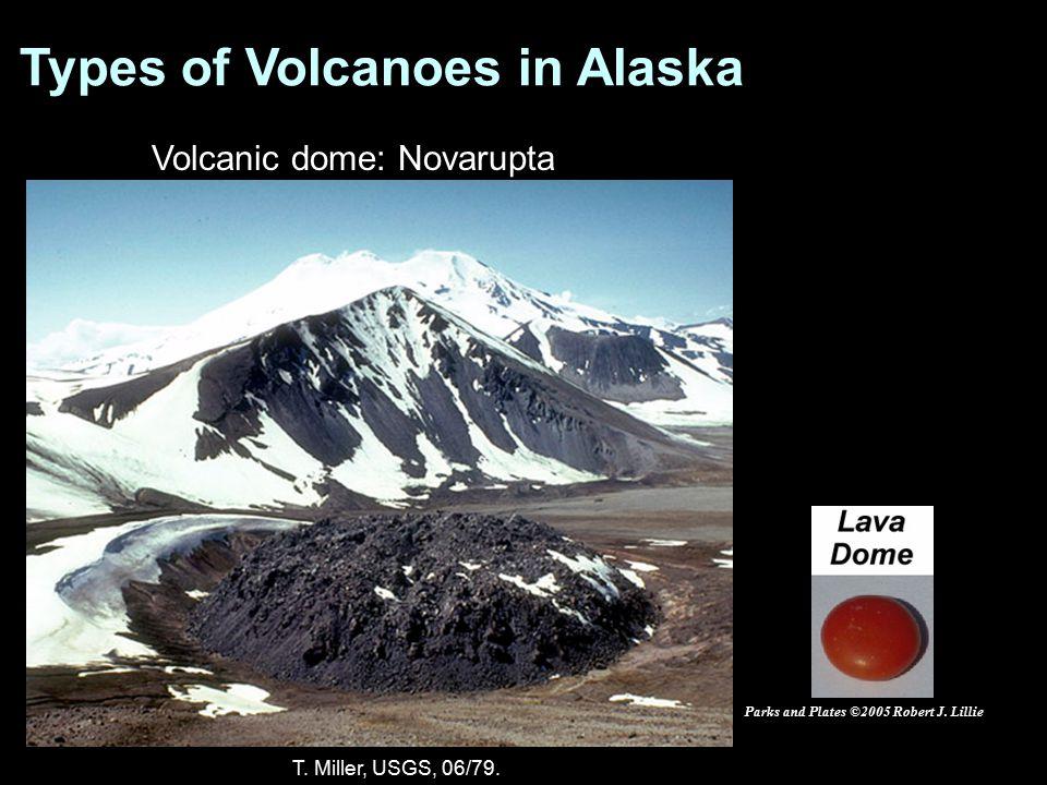 Volcanic dome: Novarupta T. Miller, USGS, 06/79. Parks and Plates ©2005 Robert J. Lillie