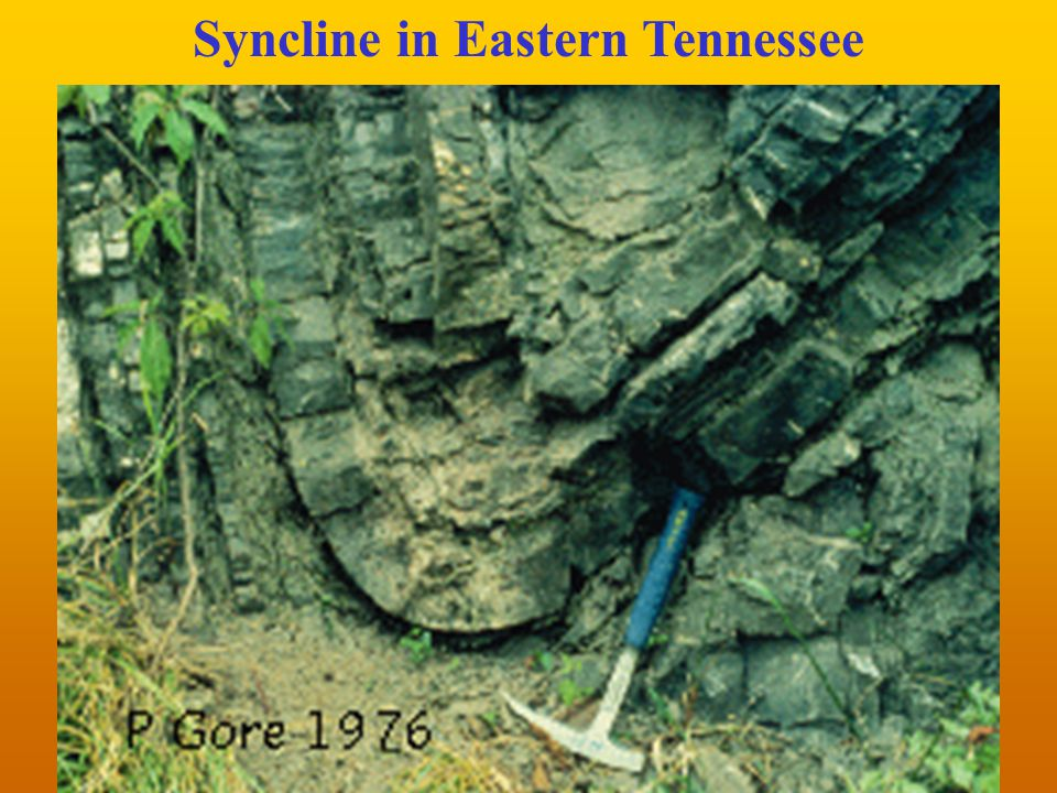 Syncline in Eastern Tennessee