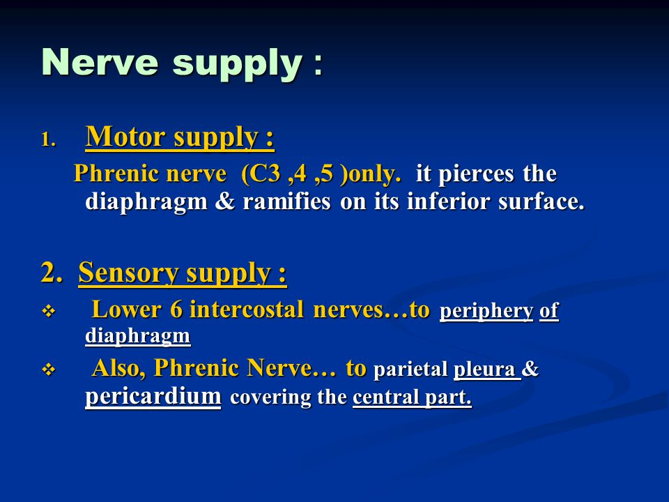 Nerve supply : 1. Motor supply : Phrenic nerve (C3,4,5 )only. it pierces the diaphragm & ramifies on its inferior surface. Phrenic nerve (C3,4,5 )only