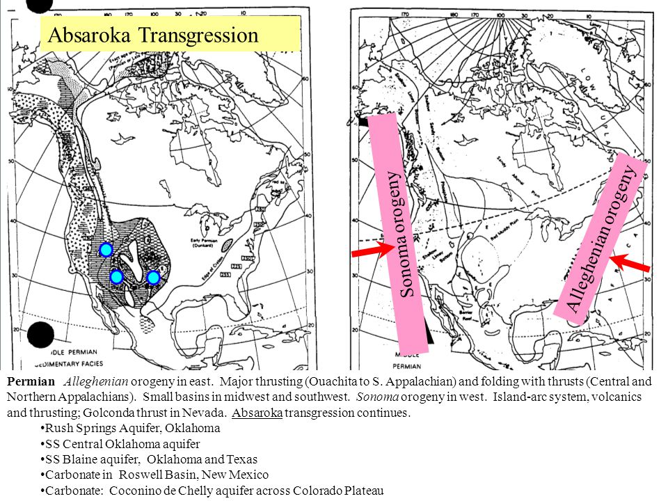 Alleghenian orogeny Sonoma orogeny Absaroka Transgression Permian Alleghenian orogeny in east. Major thrusting (Ouachita to S. Appalachian) and foldin