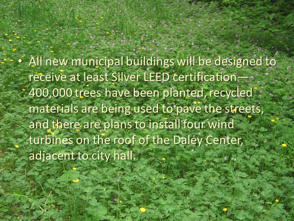 All new municipal buildings will be designed to receive at least Silver LEED certification— 400,000 trees have been planted, recycled materials are be