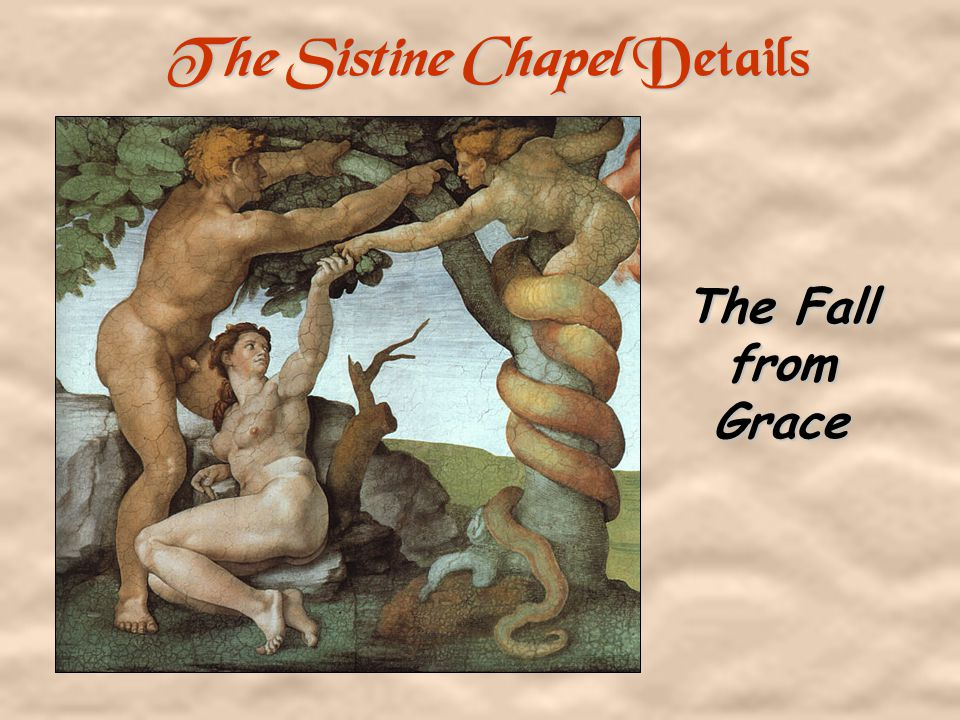 The Sistine Chapel Details Creation of Man