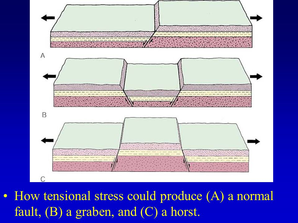 How tensional stress could produce (A) a normal fault, (B) a graben, and (C) a horst.