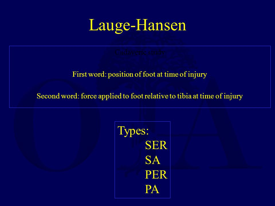Lauge-Hansen Cadaveric study First word: position of foot at time of injury Second word: force applied to foot relative to tibia at time of injury Types: SER SA PER PA