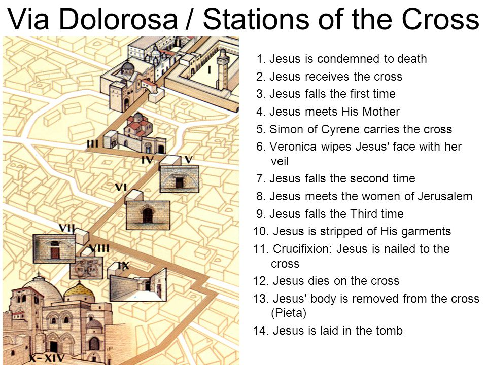 Via Dolorosa / Stations of the Cross 1. Jesus is condemned to death 2. Jesus receives the cross 3. Jesus falls the first time 4. Jesus meets His Mothe