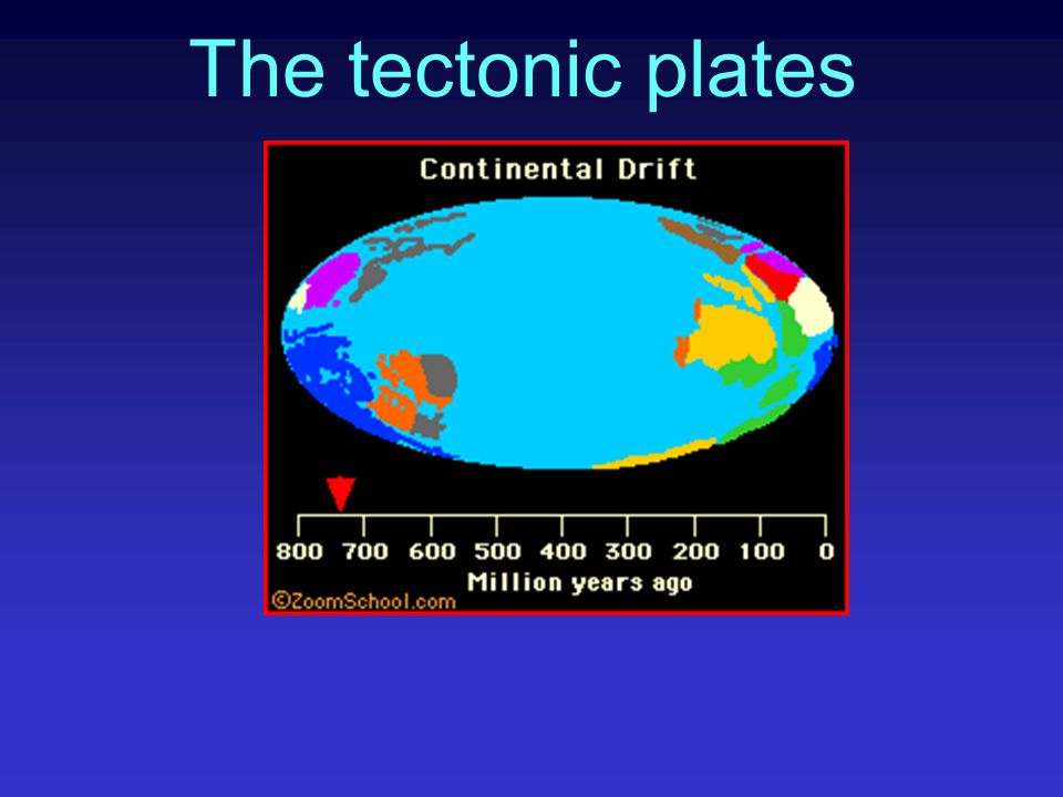 The tectonic plates